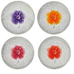 Top Salad Plate Assorted Set of 4